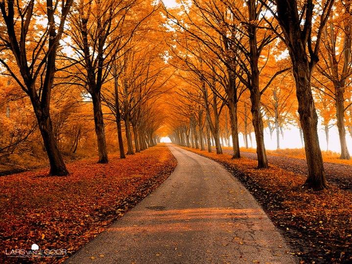 amazing-paths-wcth19