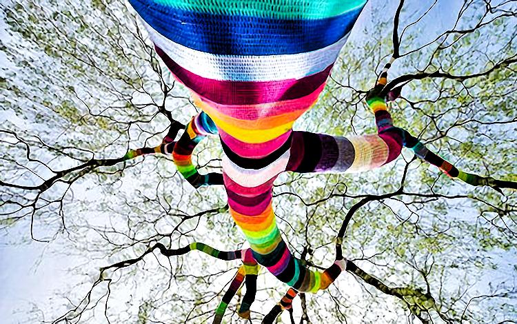 rainbowtree2