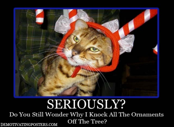 tivational_posters_posters_christmas_cat_dressing_your_cat_up_lolcats_ornaments_cat_toys_christmas_demotivators_counting_down_to_xmas_6-s640x468-272502-580