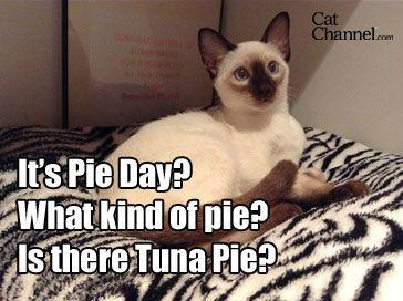 tuna-pi