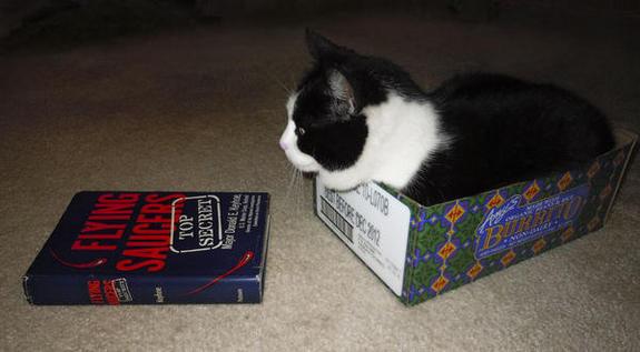 Cat-Eyes-UFO-Book_photo_medium