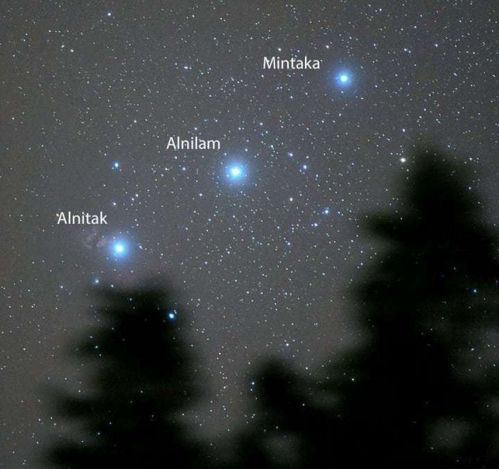 Orion-Belt-tracked-treeOct30_2010_ANNO