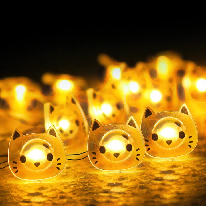 CAT-Lights