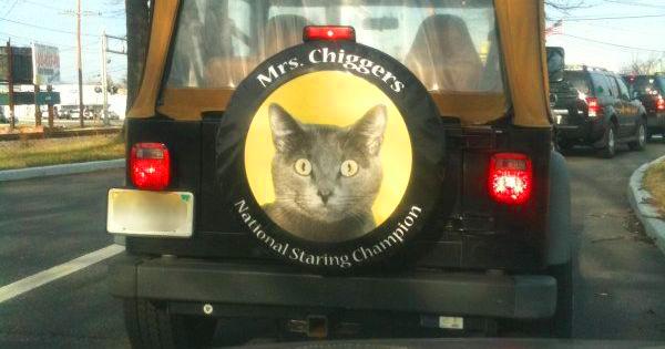 MrsChiggers
