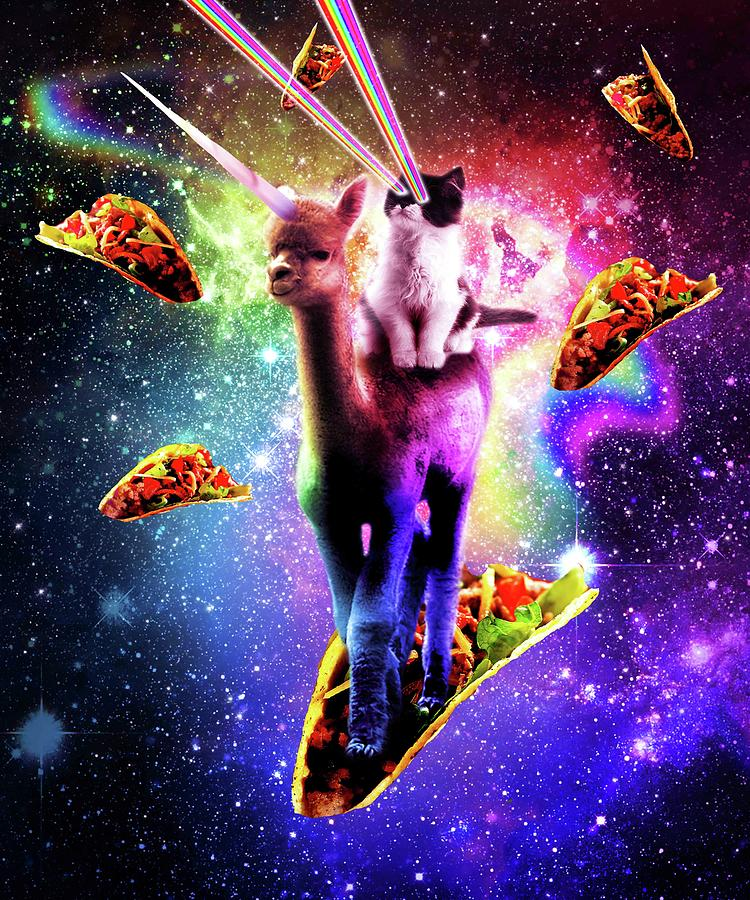 1-cosmic-cat-riding-alpaca-unicorn-random-galaxy