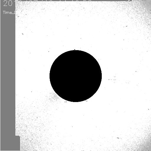 20190719_1419_seeds