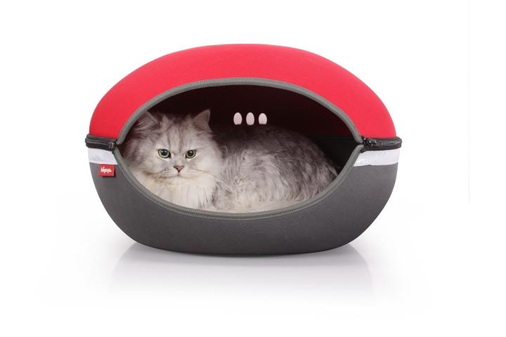 cat-ufo