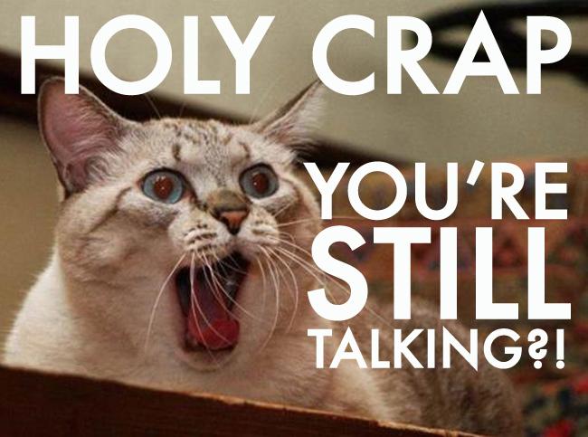 overwhelmed-cat
