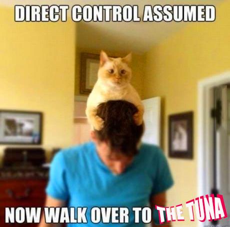 TUNA-CONTROL