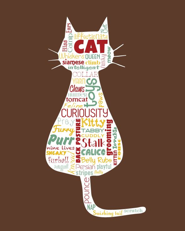 cat-illustrated