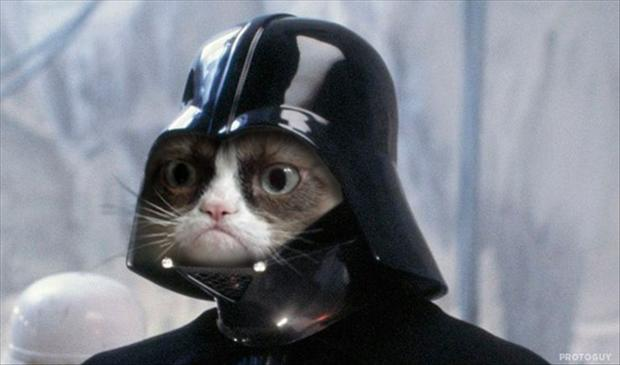 grumpy-cat-is-darth-vader