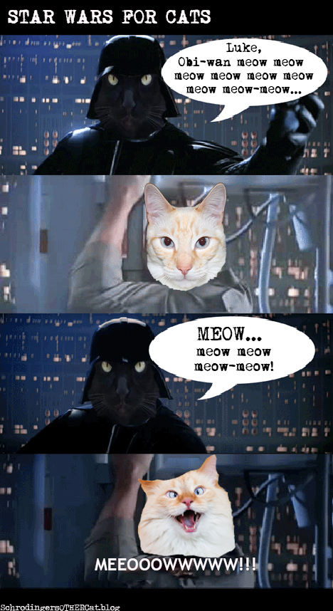star-wars-for-cats