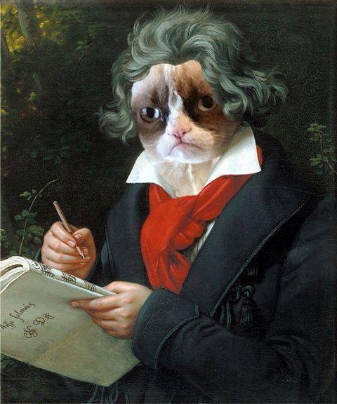 beethoven-cat
