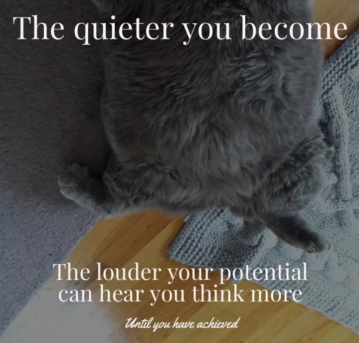 meme-kitten-be-quieter