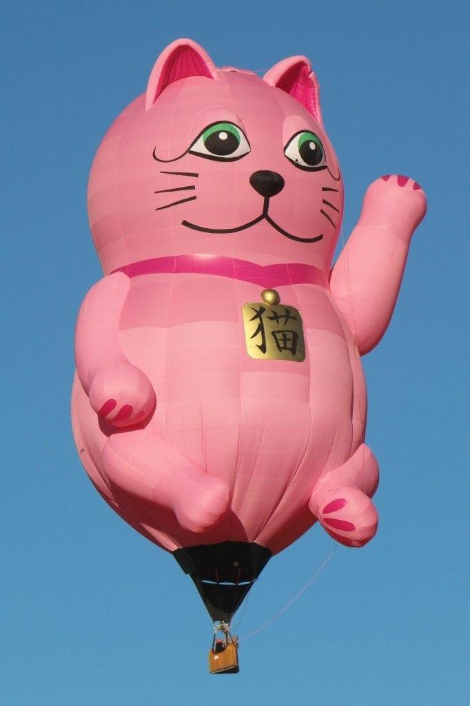 cat-baloon-Reno-Hot-Air-Baloon-Race-682x1024