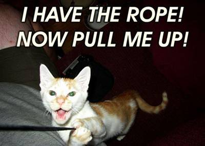 i-have-the-rope-now-pull-me-up