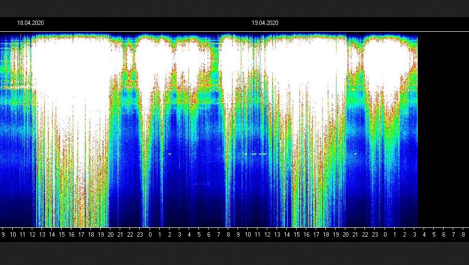 Screen Shot 2020-04-19 at 1.42.46 PM
