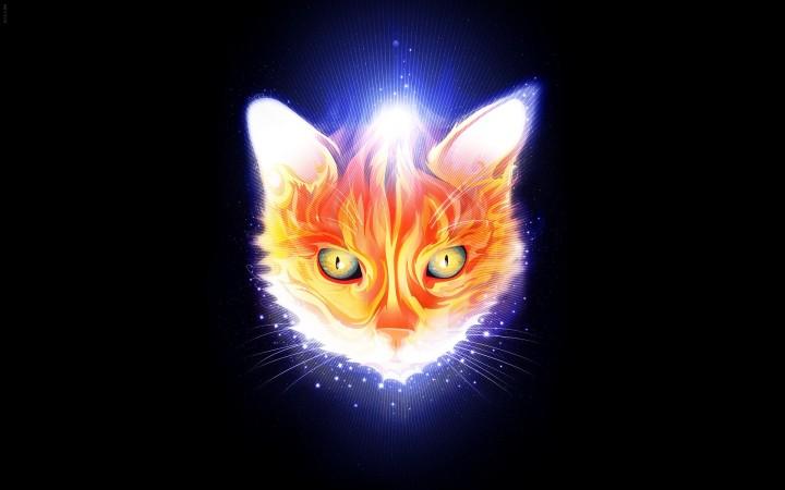 glowy-cat
